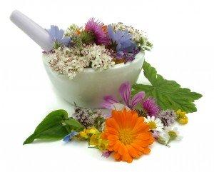 Allergies Herbs