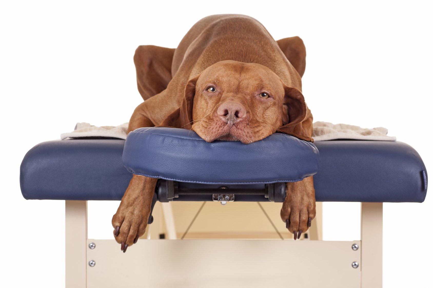 headaches waiting for my massage